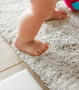 Professional Carpet Cleaning in Cincinnati